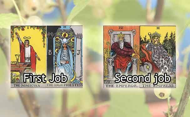 tarot explained job